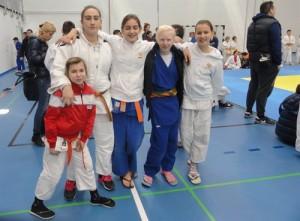 ipl-saric-judo (2)