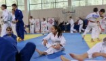 judo-2-2013
